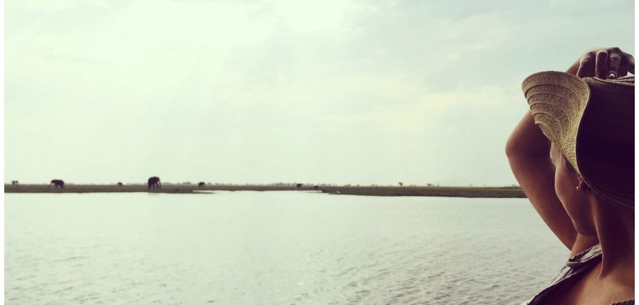 The view on the Chobe river.