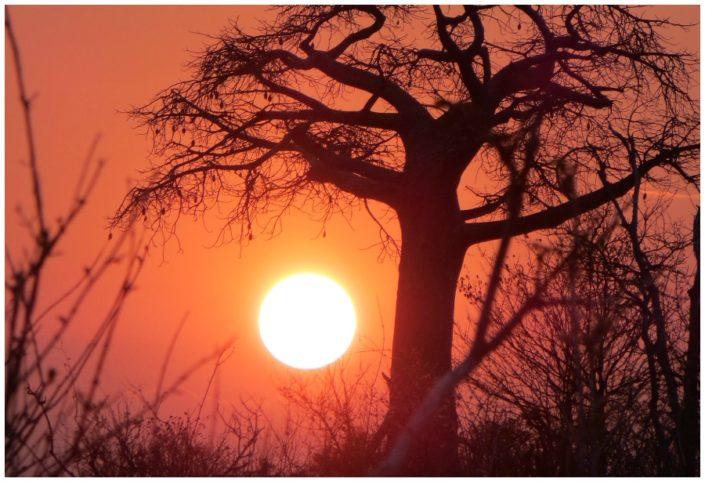Sunrise in Chobe.